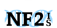 NF2 IS